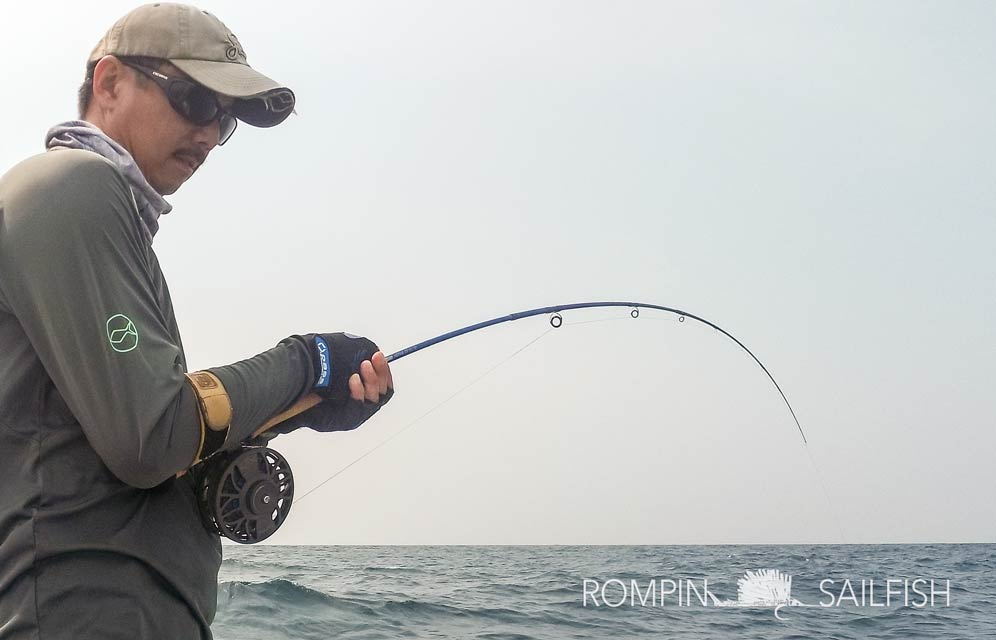 fly-fishing-rompin-sailfish_150823_1608