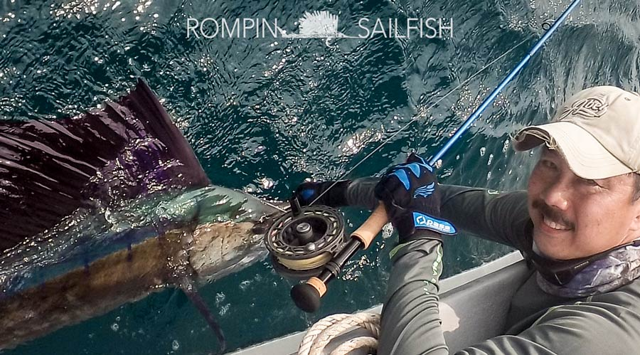 fly-fishing-rompin-sailfish_150823_1616
