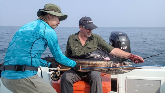 sailfish-fly-fishing-rompin-doc_151009_6618
