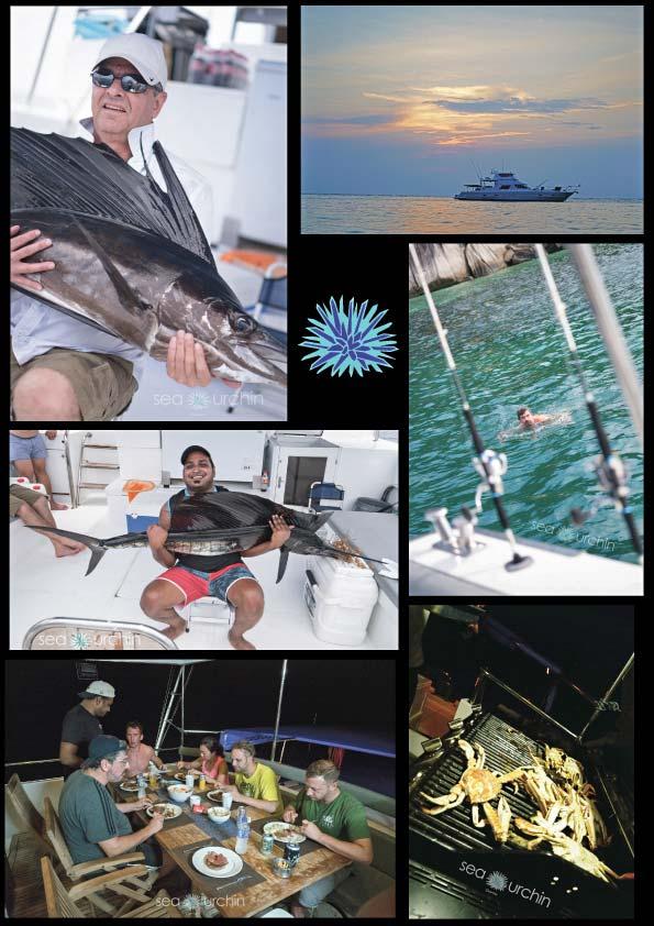 rompin-live-aboard-sea-urchin-sailfish-boat-charter