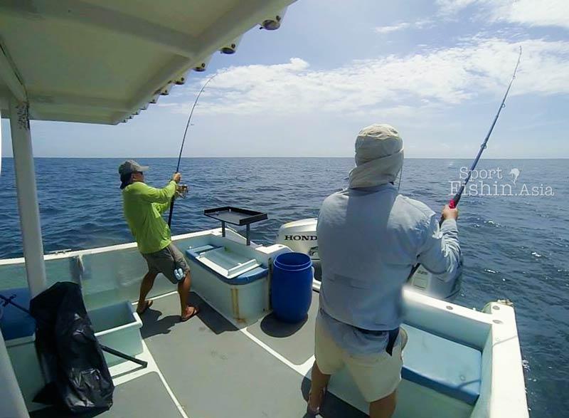 rompin-sailfish-charter-boats-transom
