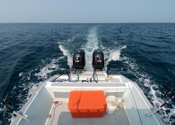 sailfish-fly-fishing-rompin_charter-boat-transom