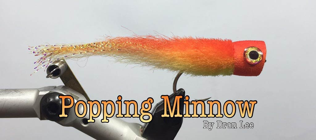 hollow-popper-fly-popping-minnow-dron-lee