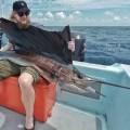 rompin-sailfish-fishing-linus-saraFile-16-03-2016,-4-24-22-PM20160311