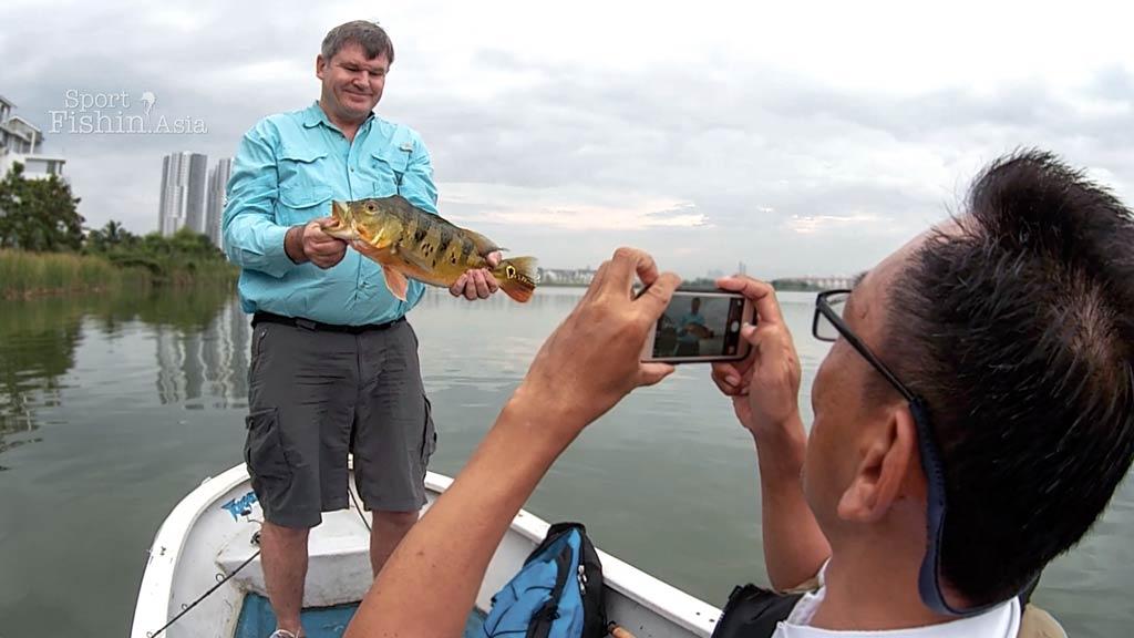 peacock-bass-fly-fishing-malaysia-bob-skuza-20150426