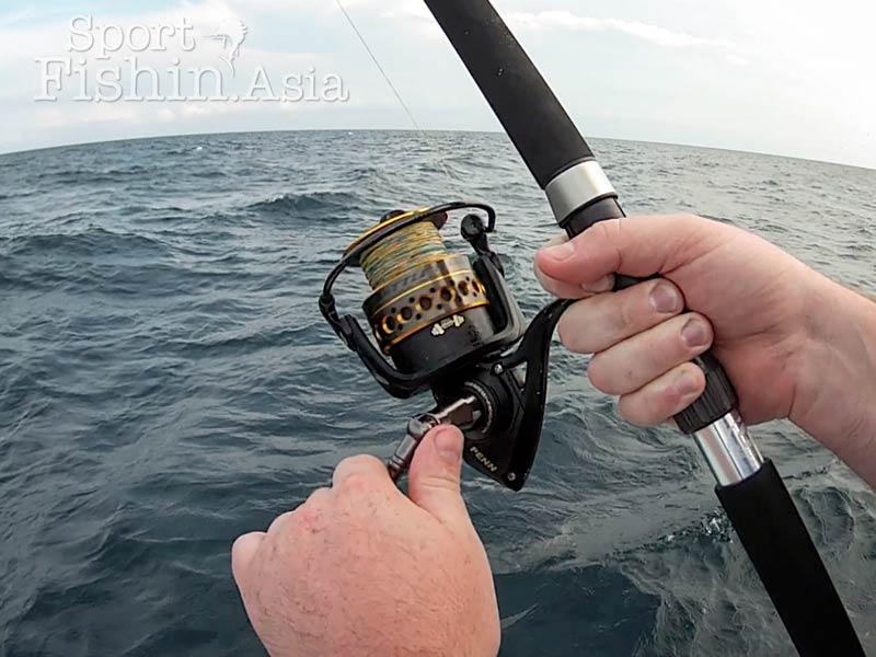 penn-battle-2-rompin-sailfish