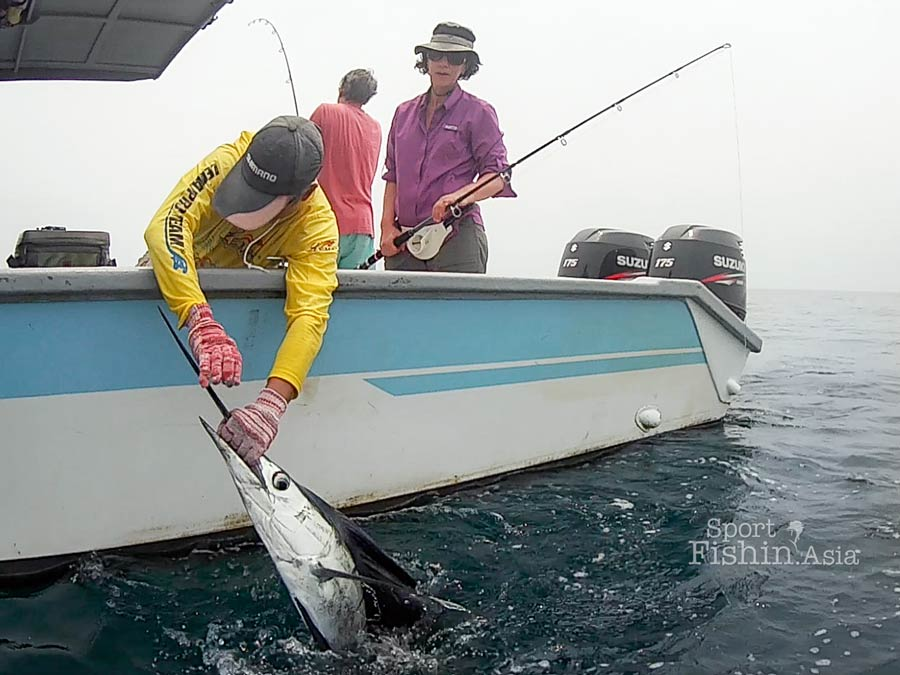 rompin-sailfish-fishing-barry-irene