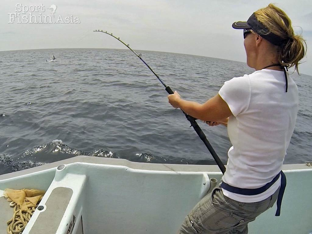 rompin-sailfish-kim-shane-20160418-(1)