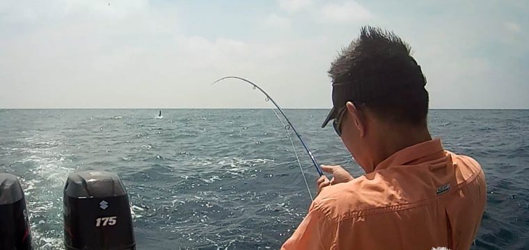 Sailfish On Fly – Bend It Like Ben