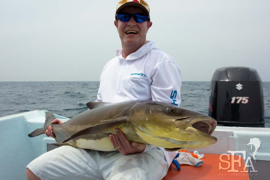 cobia-rompin-sailfish-james-phil-dalla_160808_3837