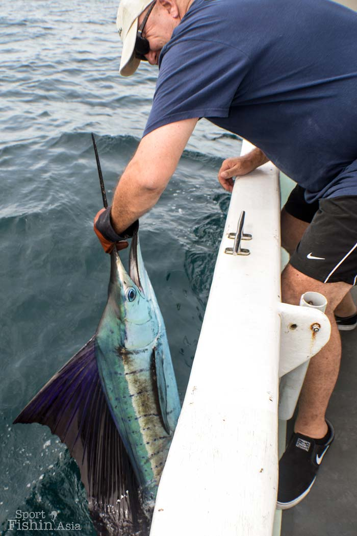 sailfish-fishing-rompin-john-scallan-08242016-dsc_0914