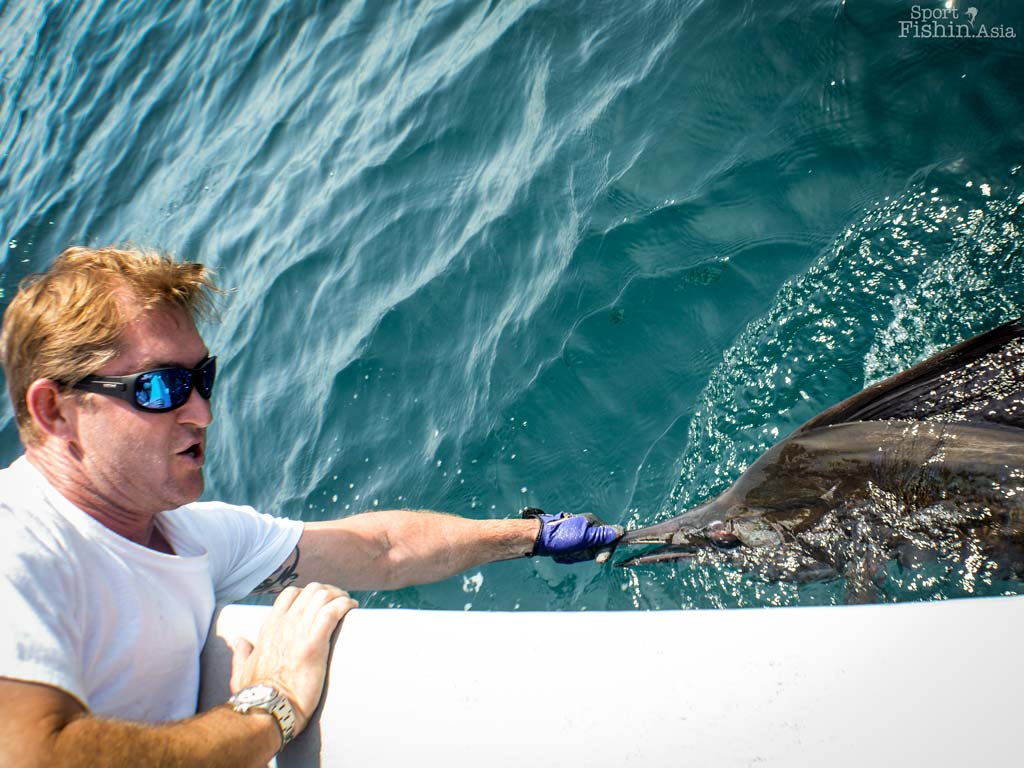 sailfish-fishing-rompin-john-scallan-08252016-dsc_0939