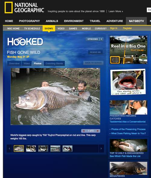Hooked on National Geographic Channel this June