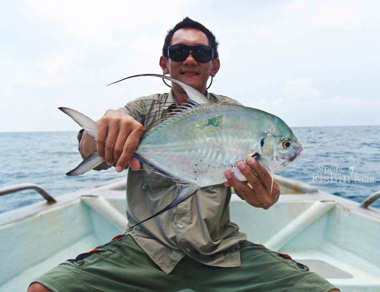 Treadfin Trevally, Cermin