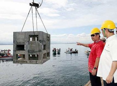 Artificial reefs bring sea life back to top fishing areas