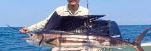 Cinematic Style Trailer Video of Sea-Am Having the Trill of His Life Catching His First Sailfish Ever