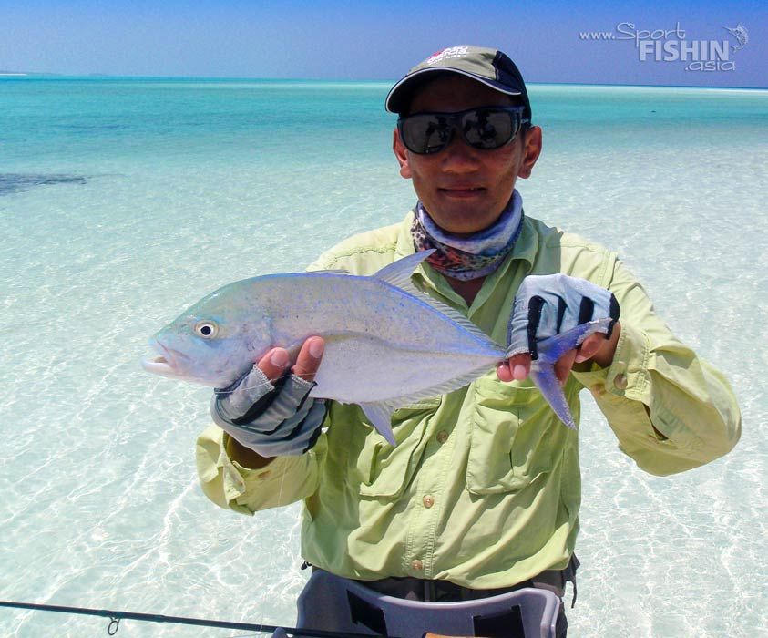 Bluefin Trevally and Fishing the Maldives
