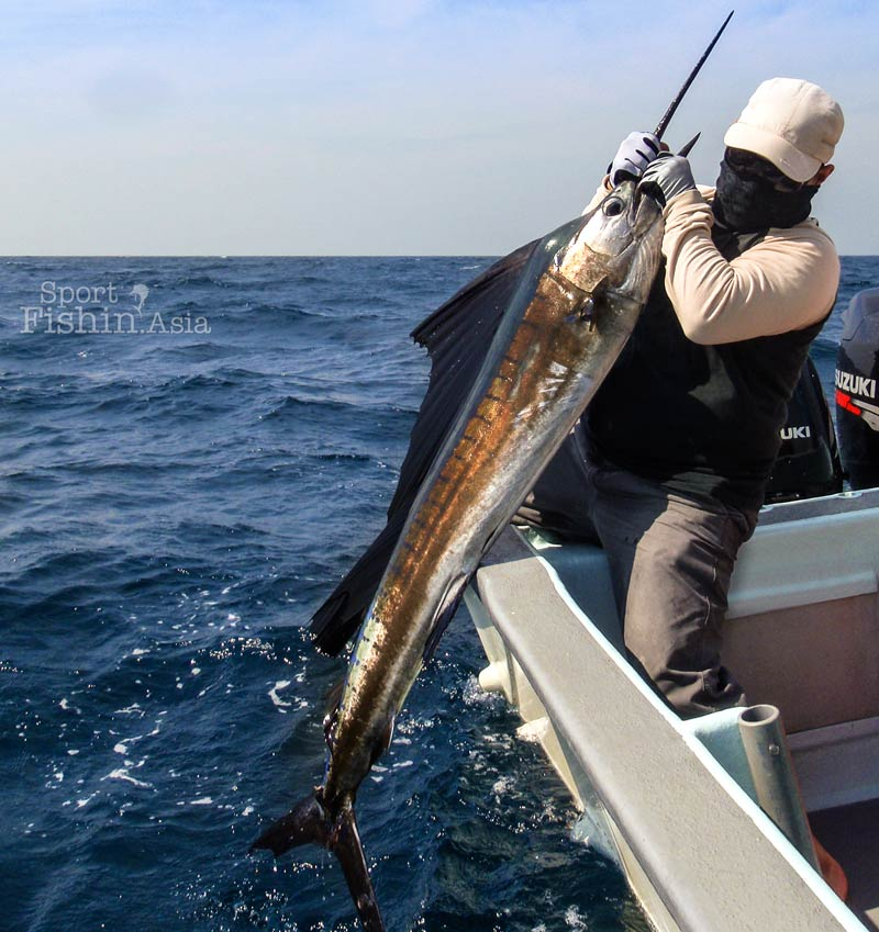 Sailfish fishing at Kuala Rompin – What is a typical day like?