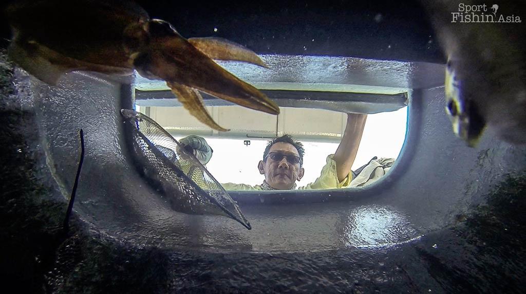 Fishing season ends at Kuala Rompin