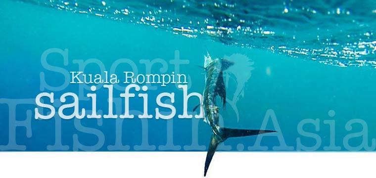 Sailfish fishing in Kuala Rompin Malaysia