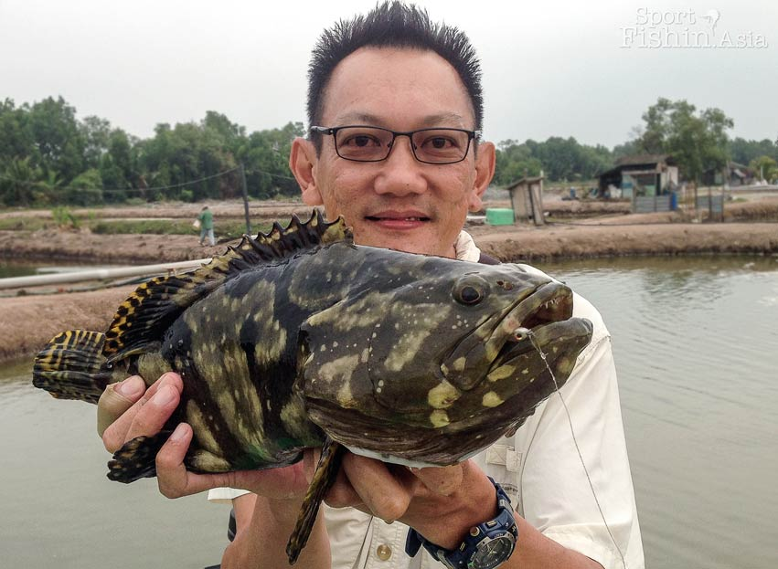 grouper-kerapu-jugra-banting-fishing-pond_-(37)