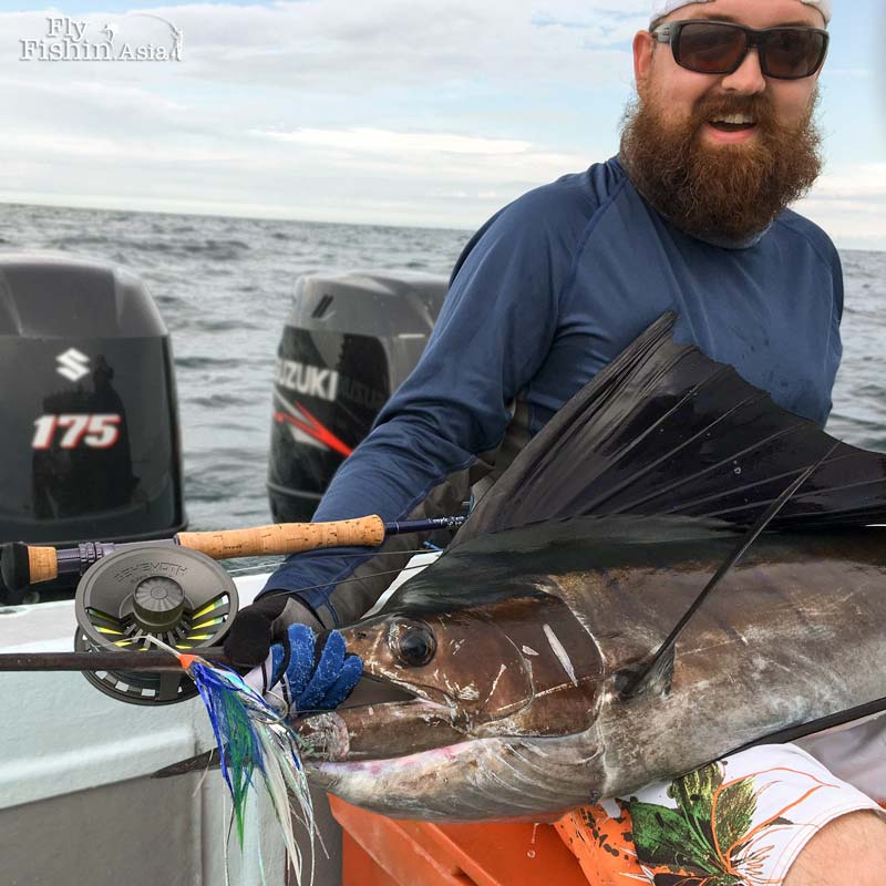 Client Made Video – Sailfish on Fly by Martyn White aka Flicking Feathers