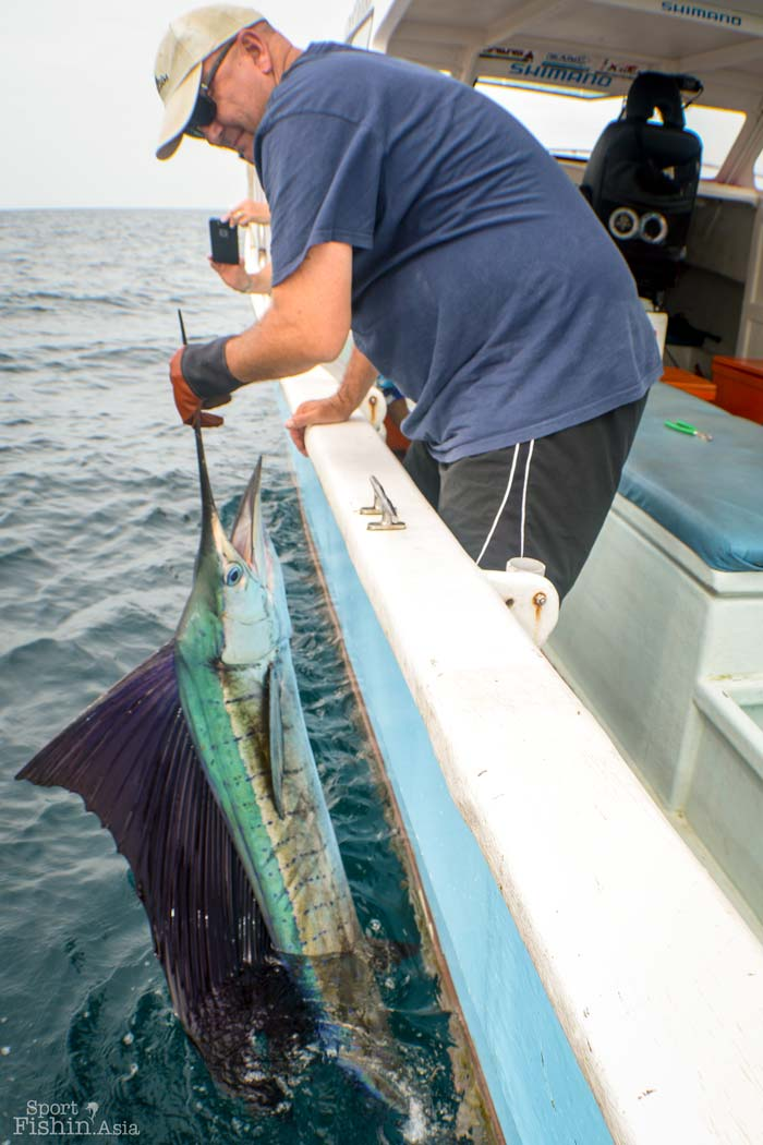 Rompin sailfish fishing with john and scott video for Fishing with john