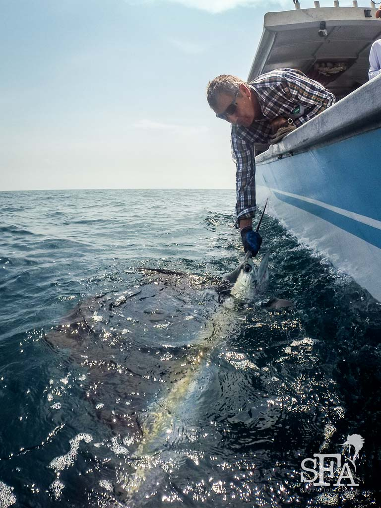 New Zealand Family Pursuit – Sailfishing with Michelle Jane, Des and Heather