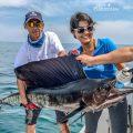 Kuala Rompin sailfish Sea Urchin live aboard