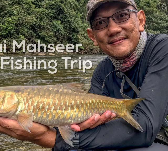 Mahseer Fly Fishing Trip Video