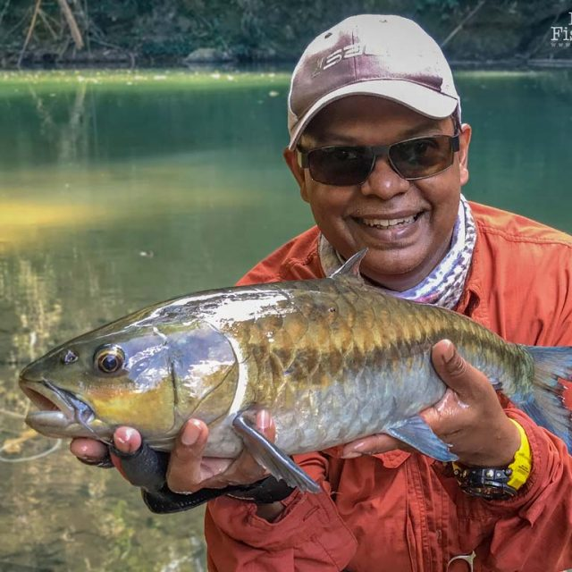 Video: A Fantastic Time Fly Fishing For Mahseer With David