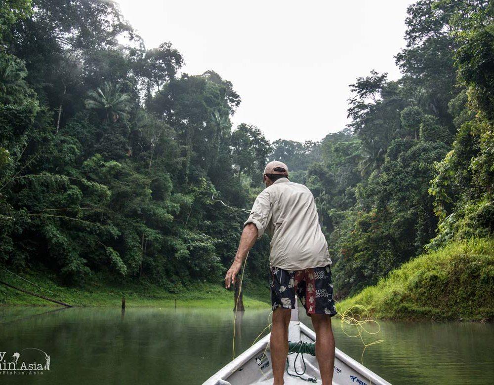 In His Own Words – Fly Fishing Sebarau and Giant Snakehead in Royal Belum Temenggor