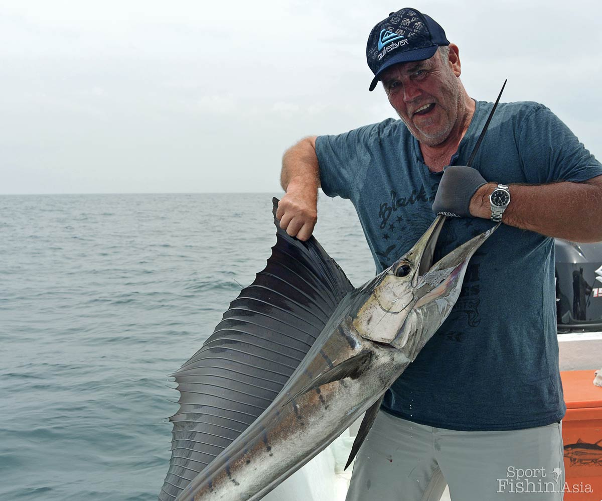 Beautiful sailfish by Stuart
