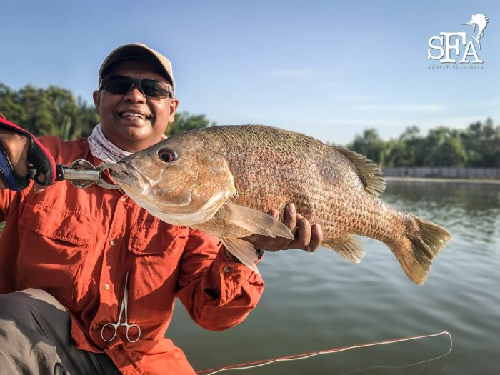 David with another nice golden snapper
