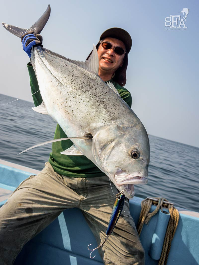 A nice giant trevally  on the twin-hook rig
