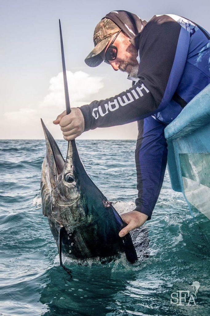 Mick scores another nice sailfish