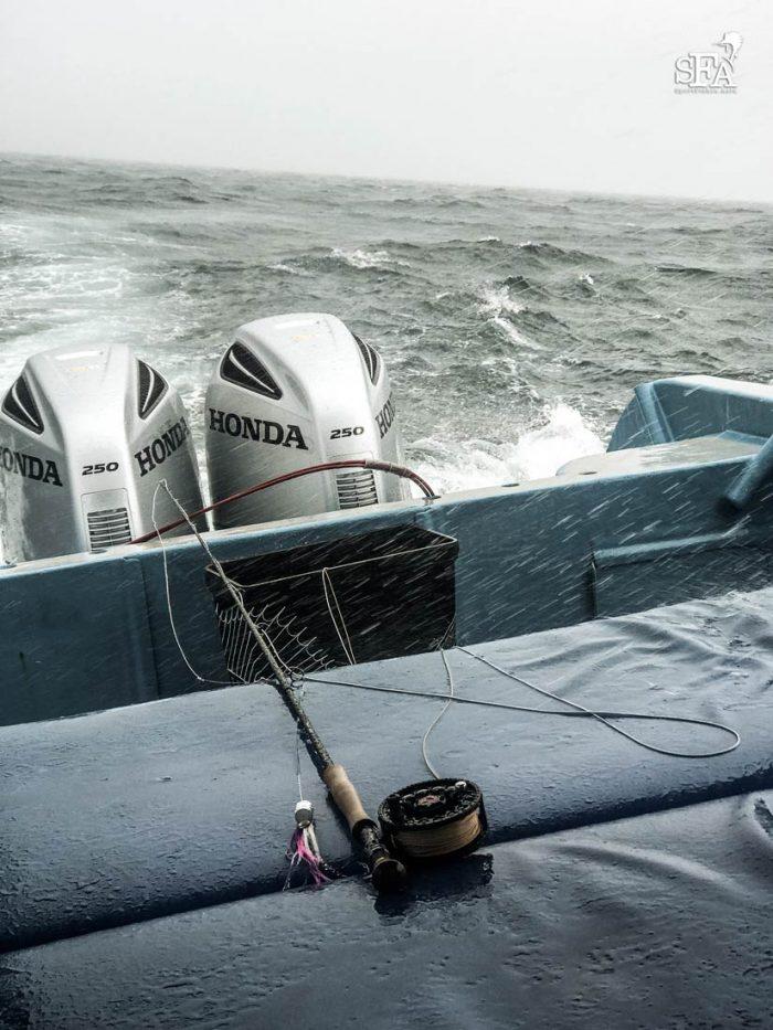 Seas got real rough