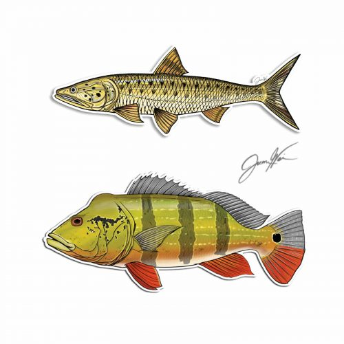 sikang peacock bass decal stickers