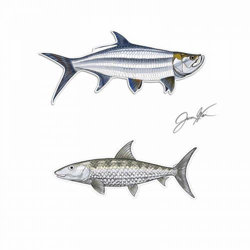 Tarpon and bonefish decal stickers