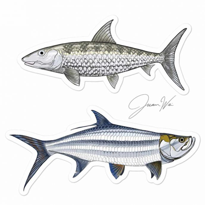 bonefish tarpon sticker decal