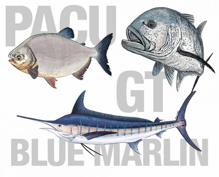 pacu giant trevally marlin stickers
