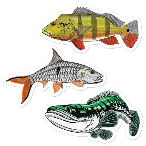 peacock bass sebarau toman stickers