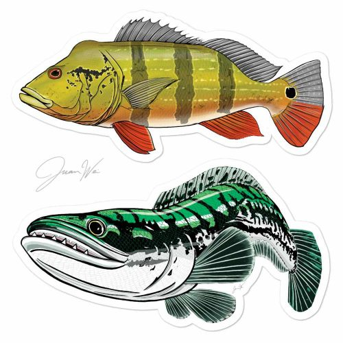 peacock bass tarpon stickers
