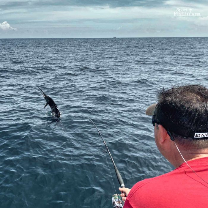 More jumps from this sailfish