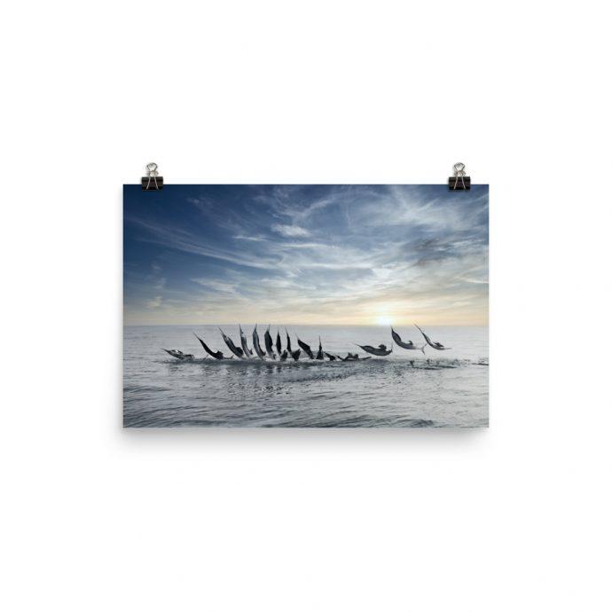 sailfish jumping tailwalk sequence poster 12x18