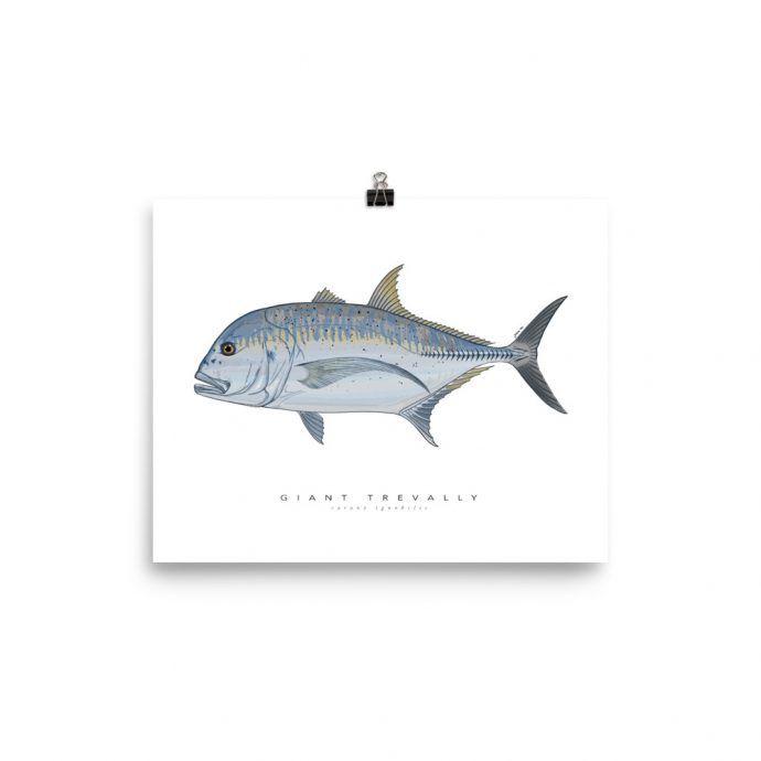 giant trevally art poster